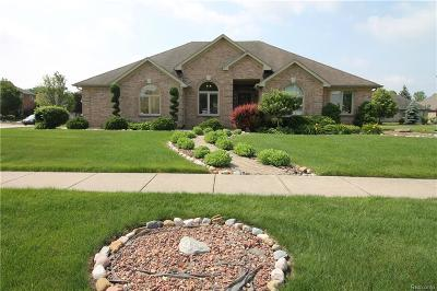 Sterling Heights Single Family Home For Sale: 3262 Bywater Dr
