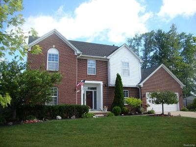 Troy Single Family Home For Sale: 2947 Ashbury Dr