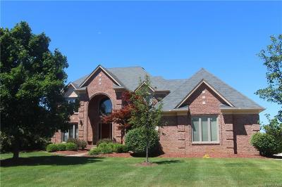 Rochester Single Family Home For Sale: 4190 Oak Tree Cir