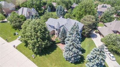 Northville Single Family Home For Sale: 17708 Rolling Woods Cir