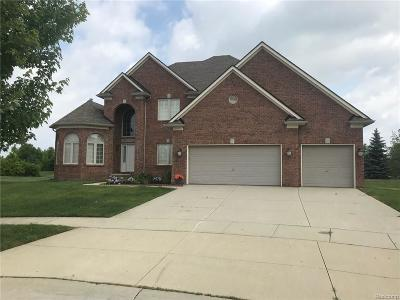 Clinton Township Single Family Home For Sale: 18443 Swan Crt