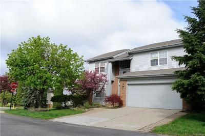 Rochester Single Family Home For Sale: 3206 Bridlewood Dr