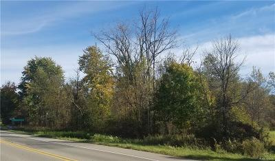 Lapeer Residential Lots & Land For Sale: Imlay City Rd