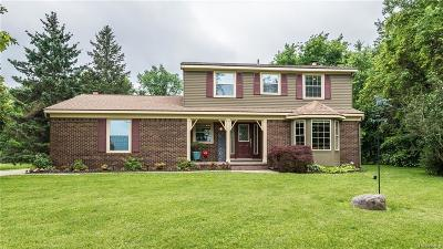 Northville Single Family Home For Sale: 53539 Nine Mile Rd