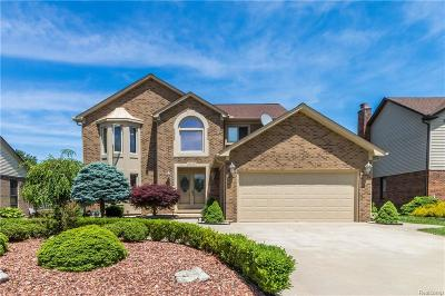 Macomb Single Family Home For Sale: 14639 Elrond Dr