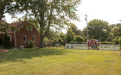 Commercial/Industrial For Sale: 38273 Dodge Park Rd