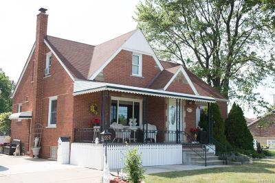Macomb Single Family Home For Sale: 38273 Dodge Park Rd