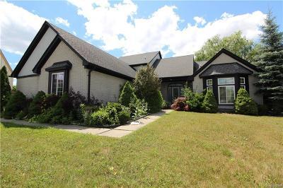 Troy Single Family Home For Sale: 966 Jordan Dr