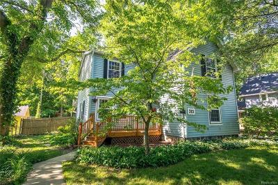 Rochester Single Family Home For Sale: 315 W 3rd St