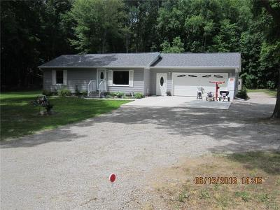 Lapeer Single Family Home For Sale: 1730 Indian Rd