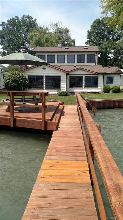 Harsens Island Single Family Home For Sale: 2075 S Channel
