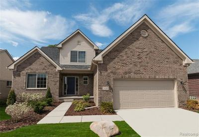 Single Family Home For Sale: Orion Township Dr