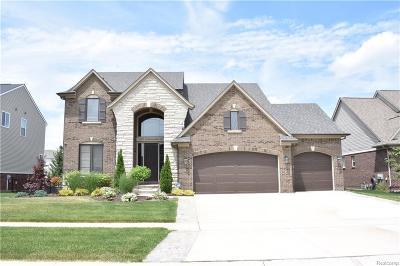 Macomb MI Single Family Home For Sale: $399,900