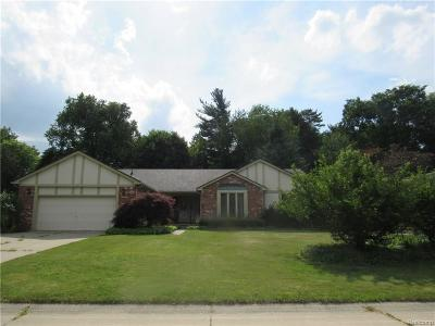Rochester Hills Single Family Home For Sale: 1726 Black Maple Dr