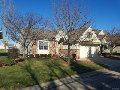 Lapeer Condo/Townhouse For Sale: 607 Rolling Hills Lane Ln