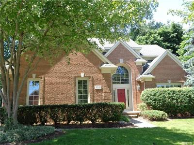 Rochester Hills Single Family Home For Sale: 3732 Greenwood