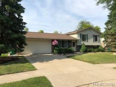 Chesterfield Single Family Home For Sale: 33329 N Justin Crt N