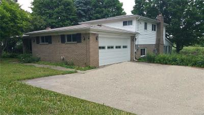 Northville Single Family Home For Sale: 53667 8 Mile Rd