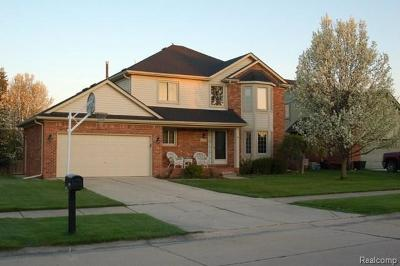 Chesterfield Single Family Home For Sale: 52599 Mary Martin Dr