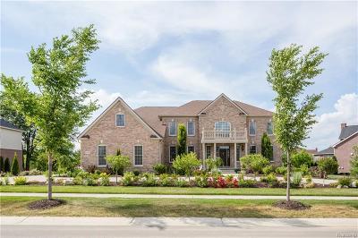 Northville Single Family Home For Sale: 50500 Tamarack
