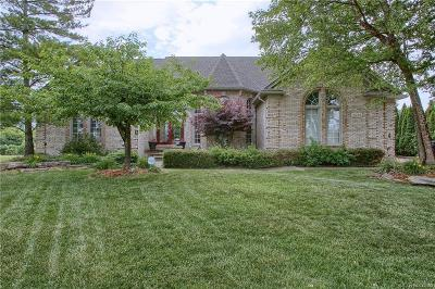 Sterling Heights MI Single Family Home For Sale: $495,000