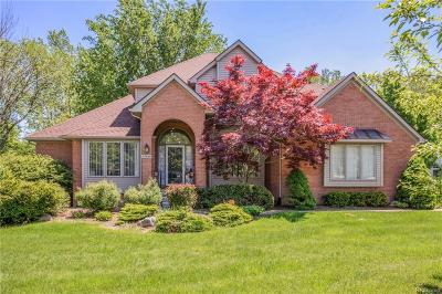 Farmington Hills Single Family Home For Sale: 37869 McKenzie Crt
