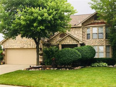 Macomb MI Single Family Home For Sale: $325,000