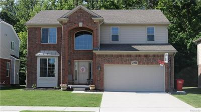 Macomb Single Family Home For Sale: 23502 Melrose Ln