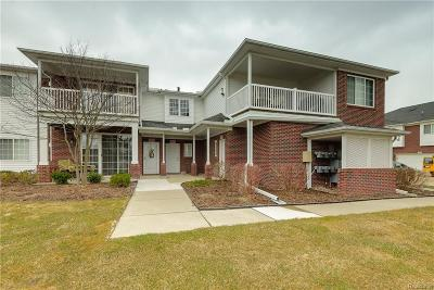Macomb Condo/Townhouse For Sale: 14398 Moravian Manor Cir