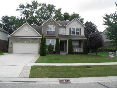 Rochester Hills Single Family Home For Sale: 3237 Everett
