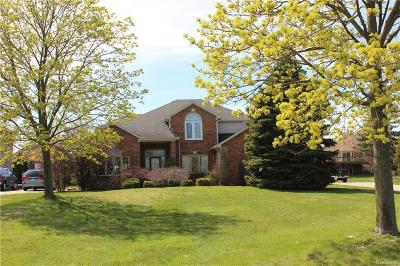 Saint Clair Single Family Home For Sale: 2162 N River Rd