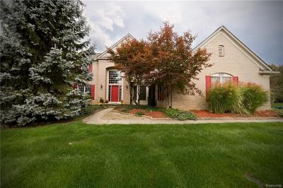 Canton Single Family Home For Sale: 338 Westbourne Crt