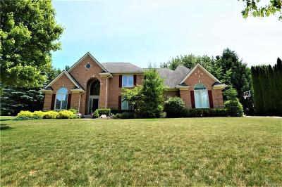 Northville Single Family Home For Sale: 17524 Rolling Woods Cir
