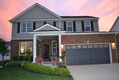 Sterling Heights Single Family Home For Sale: 42517 Meridian Dr