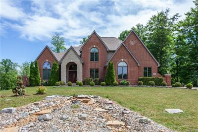 Lake Orion Single Family Home For Sale: 4212 Mill Lake Rd