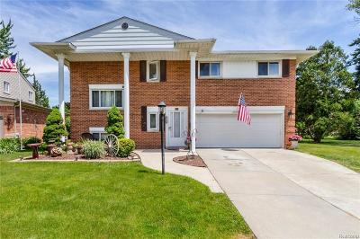 Dearborn Heights Single Family Home For Sale: 27320 Kingswood Dr