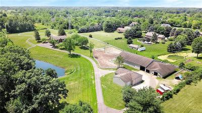Northville Single Family Home For Sale: 7278 6 Mile Rd