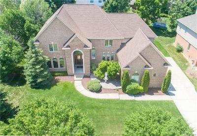 Shelby Twp Single Family Home For Sale: 55047 Meadow Ridge