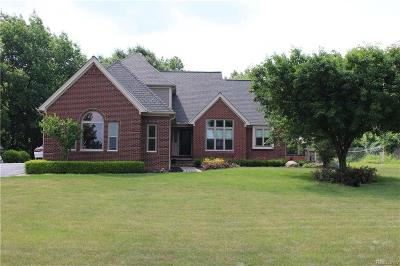 Lapeer Single Family Home For Sale: 4097 Carriage Hill Drive