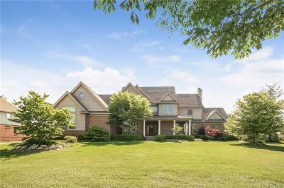 Northville Single Family Home For Sale: 22290 Waterland Dr