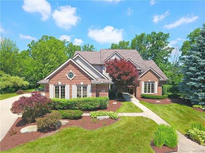 Canton Single Family Home For Sale: 49850 Hudson Dr
