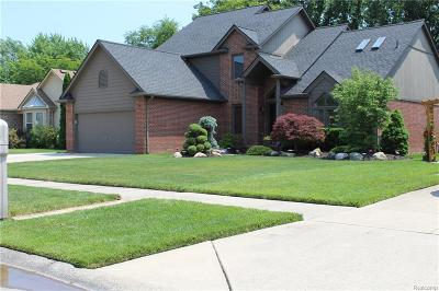 Chesterfield Single Family Home For Sale: 31178 Broderick Dr
