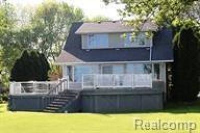 Marine City Single Family Home For Sale: 6721 S River