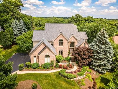 Rochester Hills Single Family Home For Sale: 1650 Scenic Hollow Dr