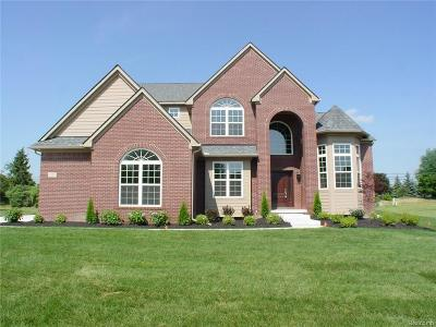 Canton Single Family Home For Sale: 8193 N Pointe Crt