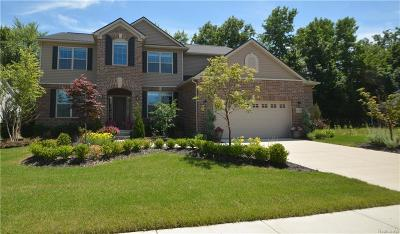 Macomb Single Family Home For Sale: 48304 Golfview Dr