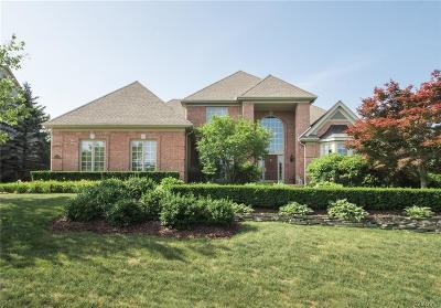 Northville Single Family Home For Sale: 17738 Stonebrook Dr