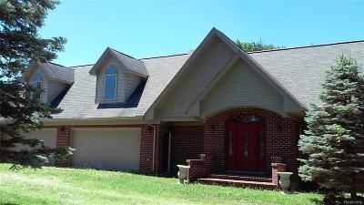 Belleville Single Family Home For Sale: 1015 E Huron River Dr