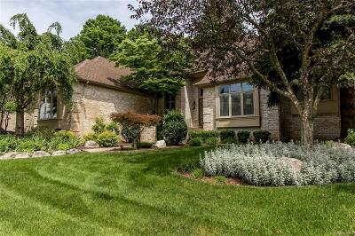 Farmington Hills Single Family Home For Sale: 27132 Winchester Crt