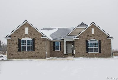 Macomb Single Family Home For Sale: 55072 Wolverine Dr
